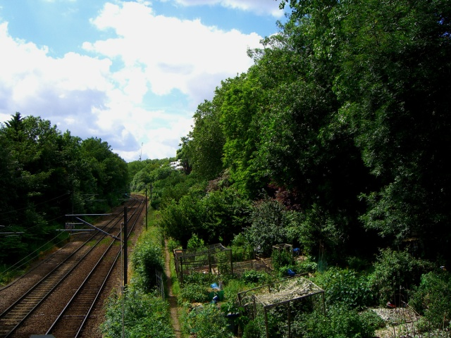 allotment-trackview-1