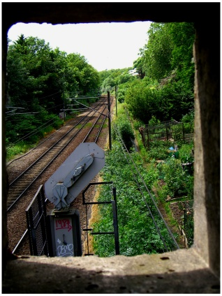 Allotment-tunnelview-1