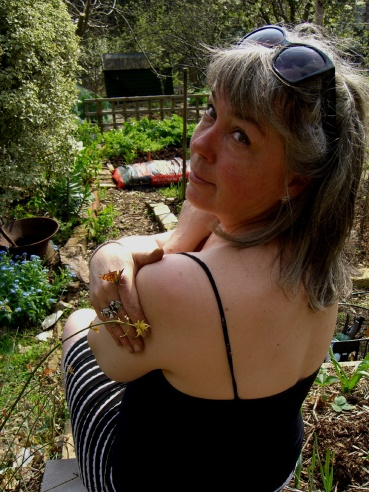 Allotment-butterfly-2