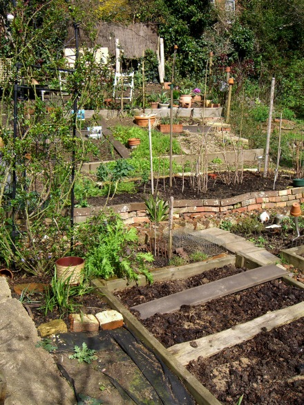 Allotment-fullviewnorth-1