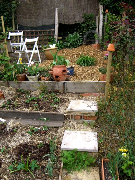 Allotment-April6-woodchip1