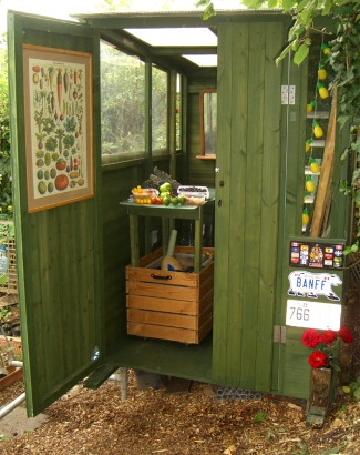 Shed13-Allotment-shed-1